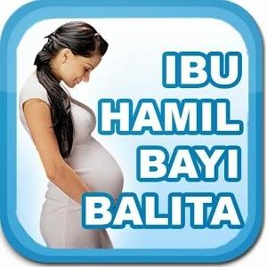 Aplikasi Kesehatan Ibu Hamil dan Menyusui