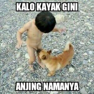 Gambar paling lucu
