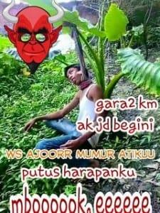Meme bahasa jawa paling gokil