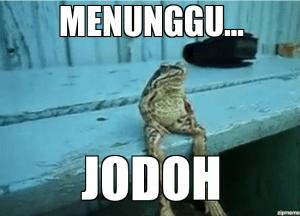 meme-jodoh