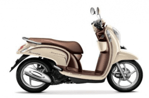 Scoopy Warna Chic Cream