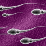 50 Manfaat Sperma Pria bagi Kesehatan dan Kecantikan