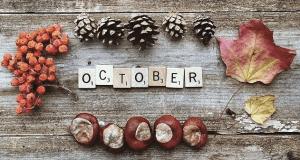 dp bbm hallo oktober terbaru